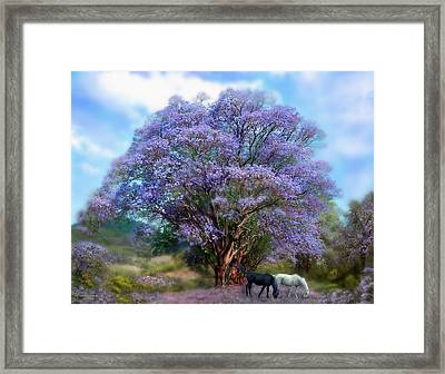 Under The Jacaranda Framed Print by Carol Cavalaris