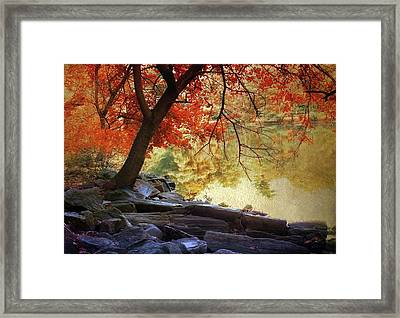 Framed Print featuring the photograph Under The Maple by Jessica Jenney