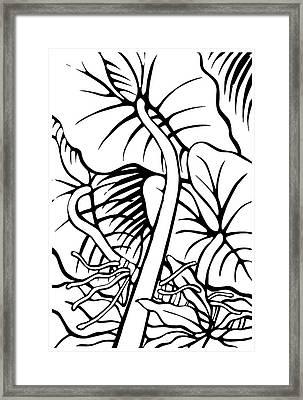 Under The Night Leaves Framed Print