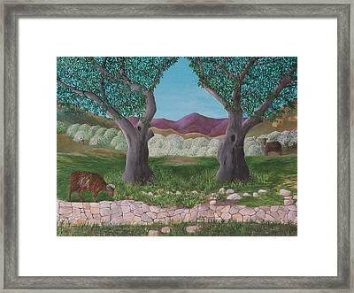 Under The Olive Trees Framed Print