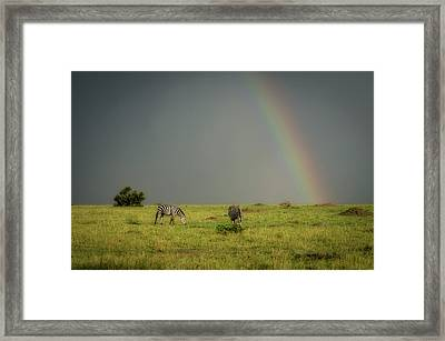 Under The Rainbow Framed Print by Alain Gaymard