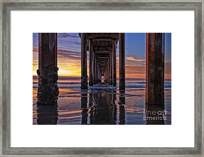 Under The Scripps Pier Framed Print by Sam Antonio Photography