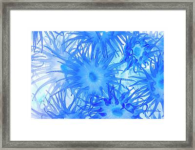 Framed Print featuring the photograph Under The Sea Colorful Watercolor Art #14 by Debra and Dave Vanderlaan