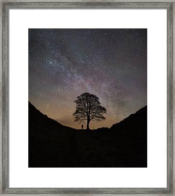 Under The Stars  Framed Print