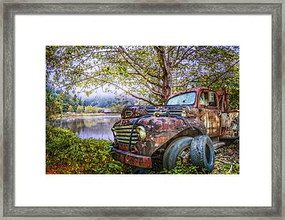 Under The Trees Framed Print by Debra and Dave Vanderlaan