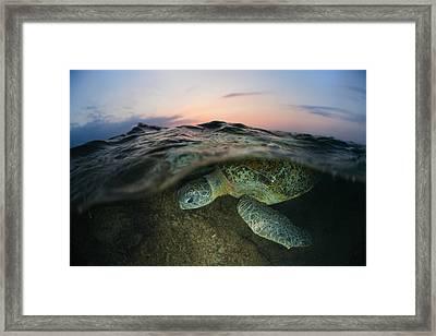 Under The Wave Framed Print