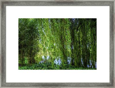 Under The Willow Tree Framed Print by Martin Newman