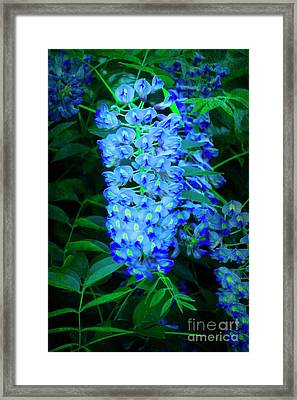 Under The Wisteria Vine Framed Print