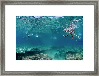 Between The Reef And The Surface. Framed Print