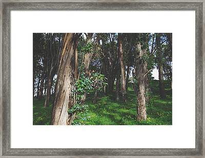 Under Your Spell Framed Print by Laurie Search