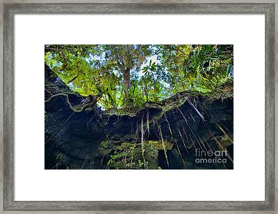 Framed Print featuring the photograph Underground by DJ Florek