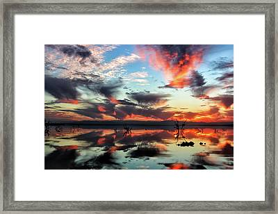Underneath The Salton Sky Framed Print