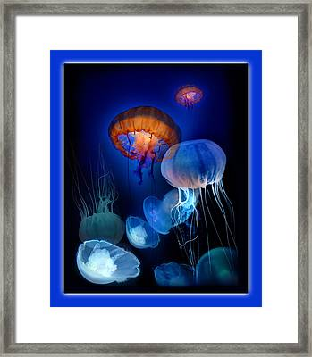 Undersea Dream Framed Print
