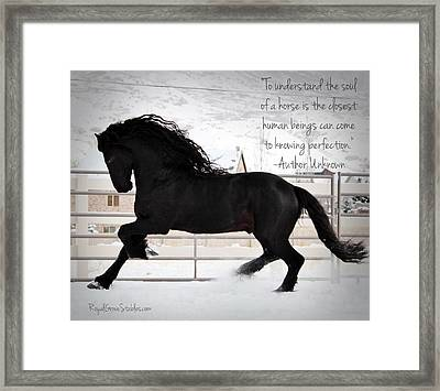 Understand The Soul Of A Horse Framed Print