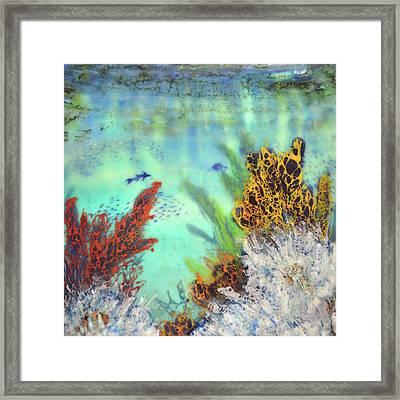 Underwater #2 Framed Print