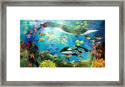 Underwater Magic Framed Print by Ally  White