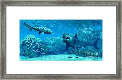 Underwater World Framed Print by Corey Ford