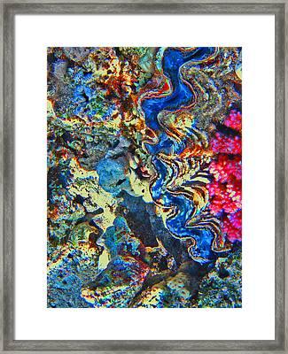 Underwater World. Sea Bottom. Framed Print by Andy Za