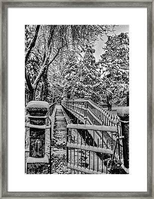 Undisturbed Framed Print