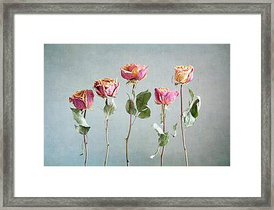 Undying Beauty Framed Print