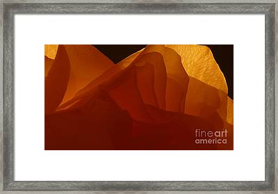 Une Dame Framed Print by Danica Radman