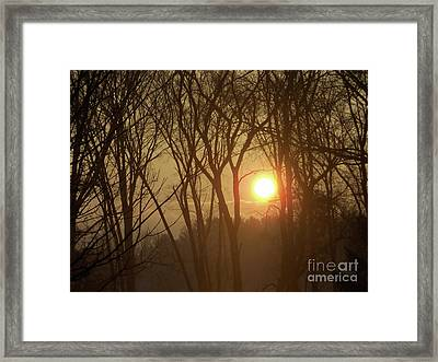 Rising Out Of The Fog-pure And Unadultrated Digital Photograph Framed Print by Mary Ann Weger