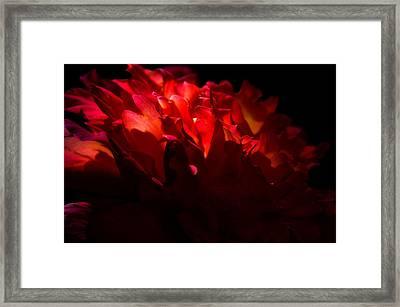 Unfailing Love  Framed Print by Deb Cohen