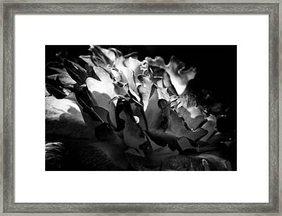 Unfailing Love IIi Framed Print by Deb Cohen