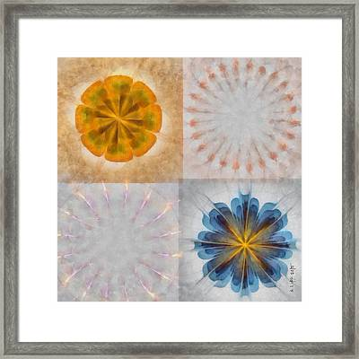 Unfidgeting Uncovered Flower  Id 16165-082134-02460 Framed Print by S Lurk