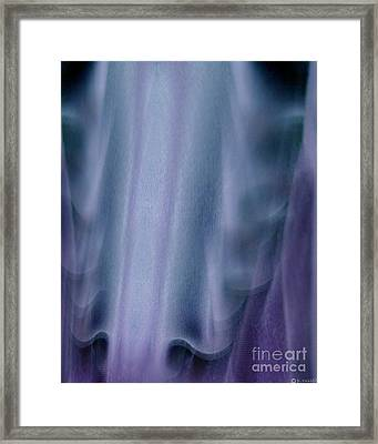 Unfolding Drama Framed Print by P Russell