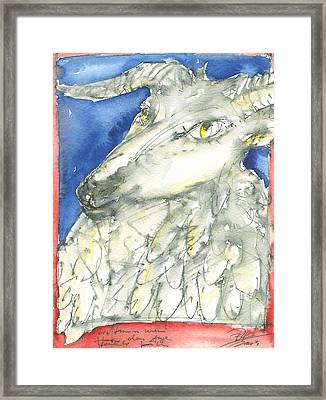 Unfriendly Sheep .... Framed Print by Joerg Bernhard Klemmer
