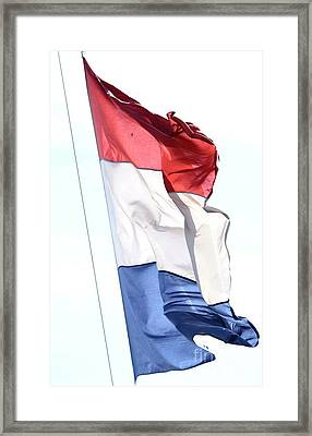 Framed Print featuring the photograph Unfurl 02 by Stephen Mitchell