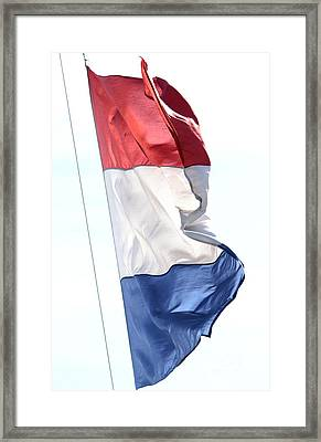 Framed Print featuring the photograph Unfurl 03 by Stephen Mitchell
