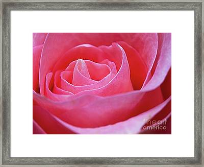 Framed Print featuring the photograph Unfurl by Ray Shiu