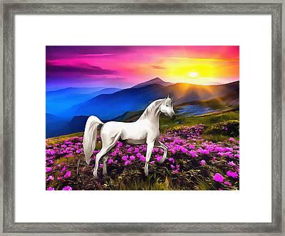 Unicorn At Sunset Framed Print