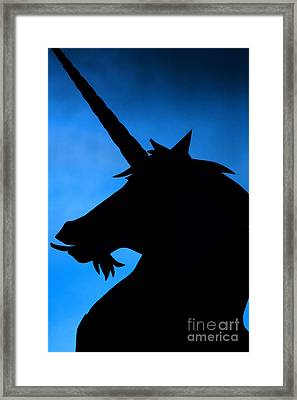 Framed Print featuring the photograph Unicorn by Craig B