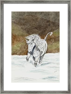 Unicorn Icelandic Framed Print