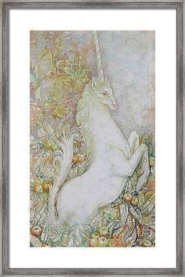 Unicorn Framed Print by Tanya Ilyakhova