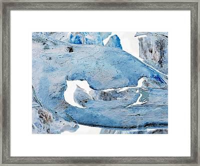 Unidentified Aquatic Object Framed Print