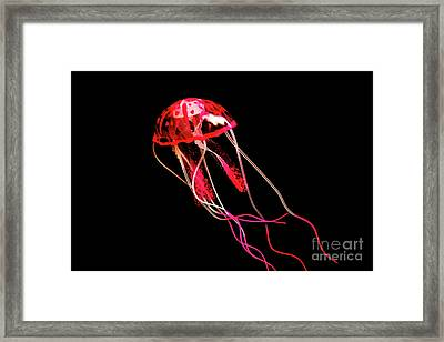 Uninhibited Darkness Framed Print by Jorgo Photography - Wall Art Gallery