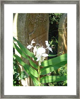 Unitarian Church Cemetery Framed Print by Richard Marcus