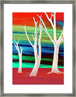 Framed Print featuring the photograph United Trees by Munir Alawi