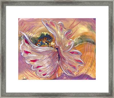 Universal Cacoon Framed Print
