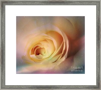 Framed Print featuring the photograph Universal Rose by Kristine Nora