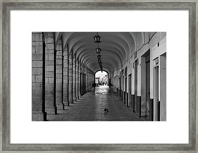 Framed Print featuring the photograph Universal Sign by David Chandler