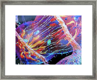 Universal Twists Framed Print by Florene Welebny