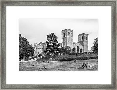 University Of California Los Angeles Landscape Framed Print