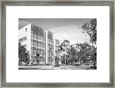 University Of California San Diego Bioengineering  Framed Print