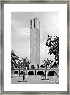 University Of California Santa Barbara Storke Tower Framed Print
