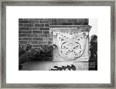 University Of Michigan Organic Detail Framed Print